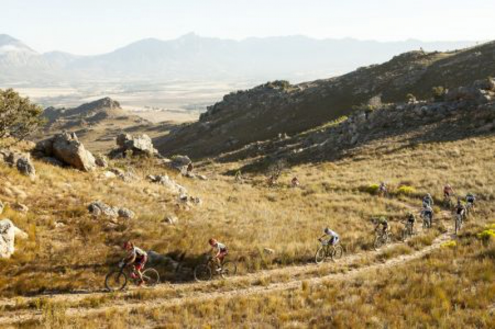 Ariane Kleinhans (front L) and Annika Langvad (Second L) lead a bunch during stage 3 of the 2016 Absa Cape Epic Mountain Bike stage race held from Saronsberg Wine Estate in Tulbagh to the Cape Peninsula University of Technology in Wellington, South Africa on the 16th March 2016 Photo by Sam Clark/Cape Epic/SPORTZPICS PLEASE ENSURE THE APPROPRIATE CREDIT IS GIVEN TO THE PHOTOGRAPHER AND SPORTZPICS ALONG WITH THE ABSA CAPE EPIC ace2016