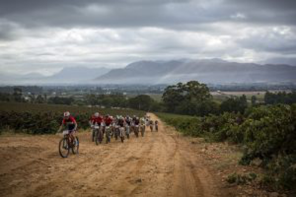 Sascha Weber of Team Novus OMX Pro leads the bunch during the final stage (stage 7) of the 2016 Absa Cape Epic Mountain Bike stage race from Boschendal in Stellenbosch to Meerendal Wine Estate in Durbanville, South Africa on the 20th March 2016 Photo by Nick Muzik/Cape Epic/SPORTZPICS PLEASE ENSURE THE APPROPRIATE CREDIT IS GIVEN TO THE PHOTOGRAPHER AND SPORTZPICS ALONG WITH THE ABSA CAPE EPIC ace2016