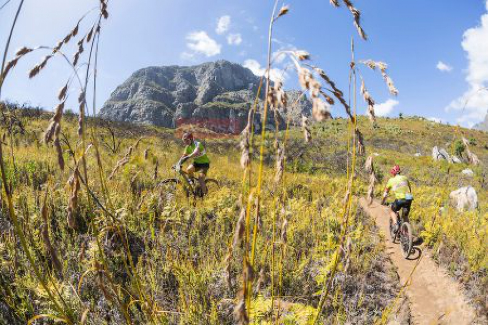 Riders head up steep singletrack during stage 6 of the 2016 Absa Cape Epic Mountain Bike stage race from Boschendal in Stellenbosch, South Africa on the 19th March 2015 Photo by Dominic Barnardt/Cape Epic/SPORTZPICS